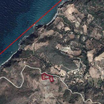 İzmir Karaburun Haseki Mah. Denize 300m, 4165m2 Bağ ve Tarla