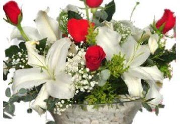 Sedef Çiçekçilik