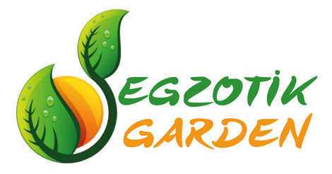 Egzotik Garden