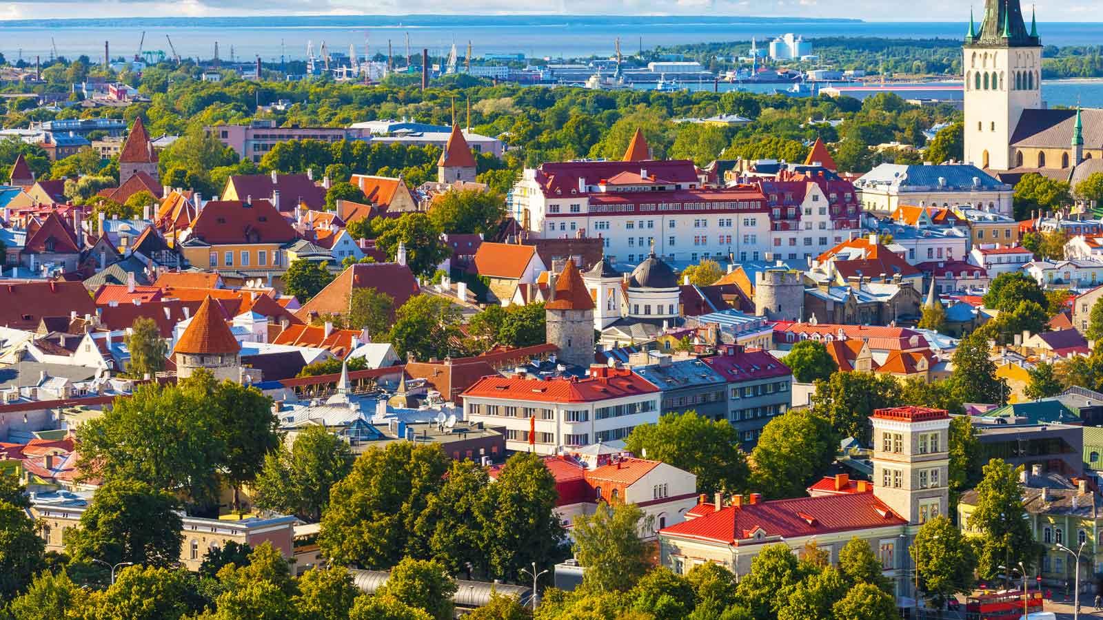 Estonya'daki Türk Firmaları