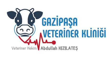 Gazipaşa Veteriner Kliniği | Abdullah Kızılateş