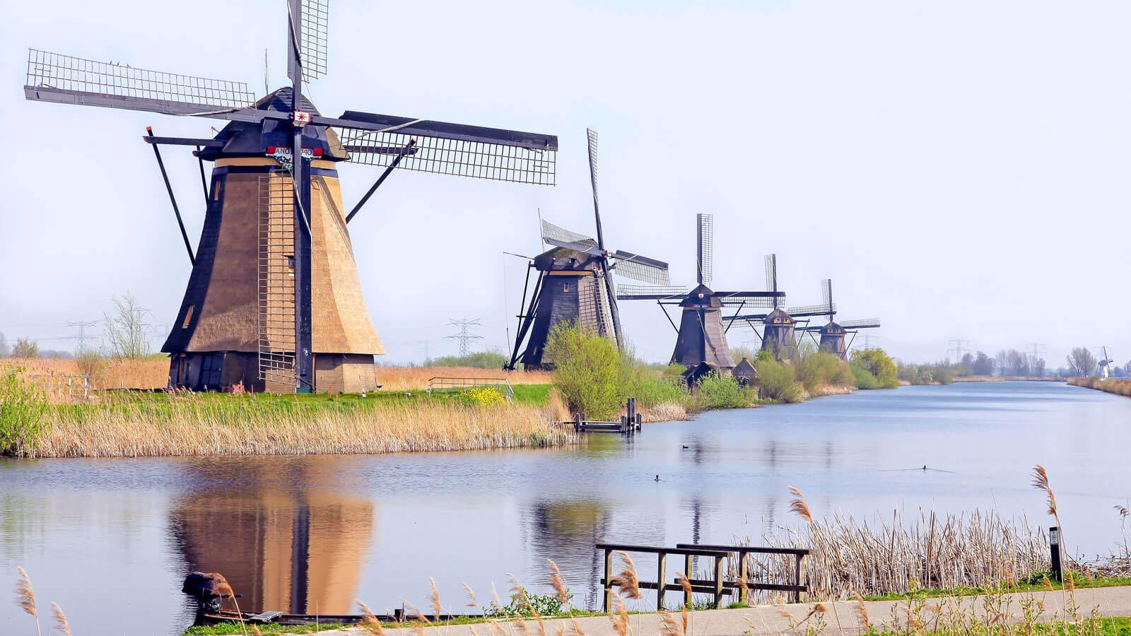 Hollanda'daki Türk Firmaları