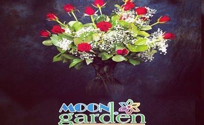 Moon garden çiçek evi