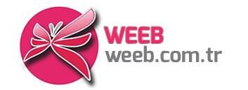 Weeb Akademi