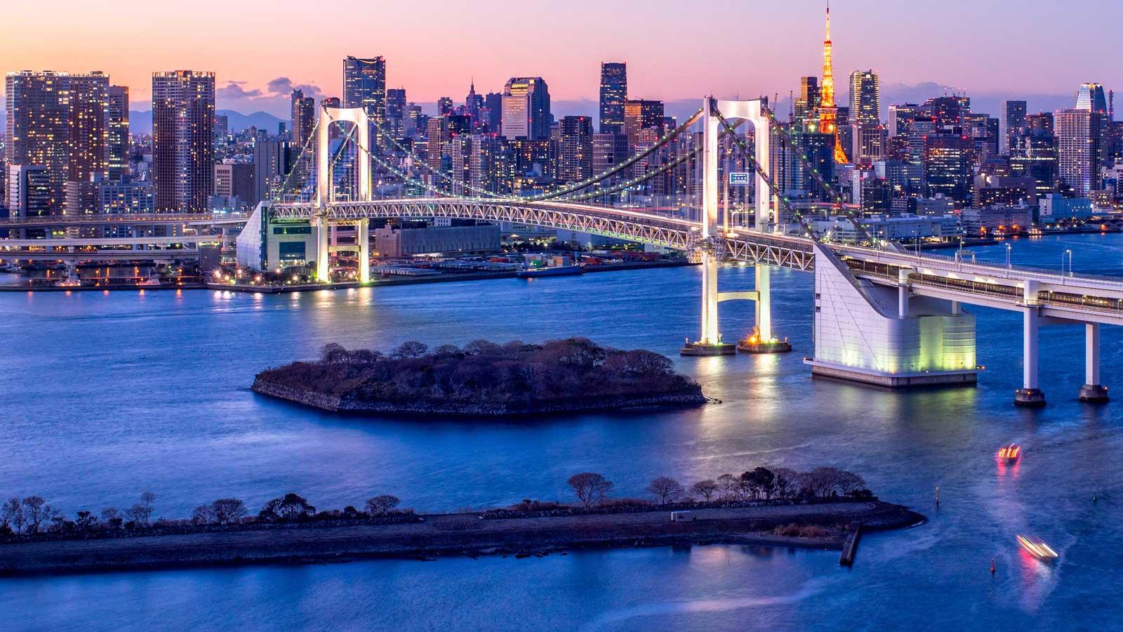 Japonya'daki Türk Firmaları