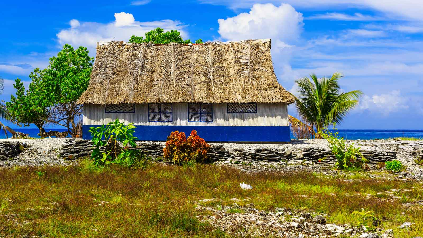 Kiribati'deki Türk Firmaları
