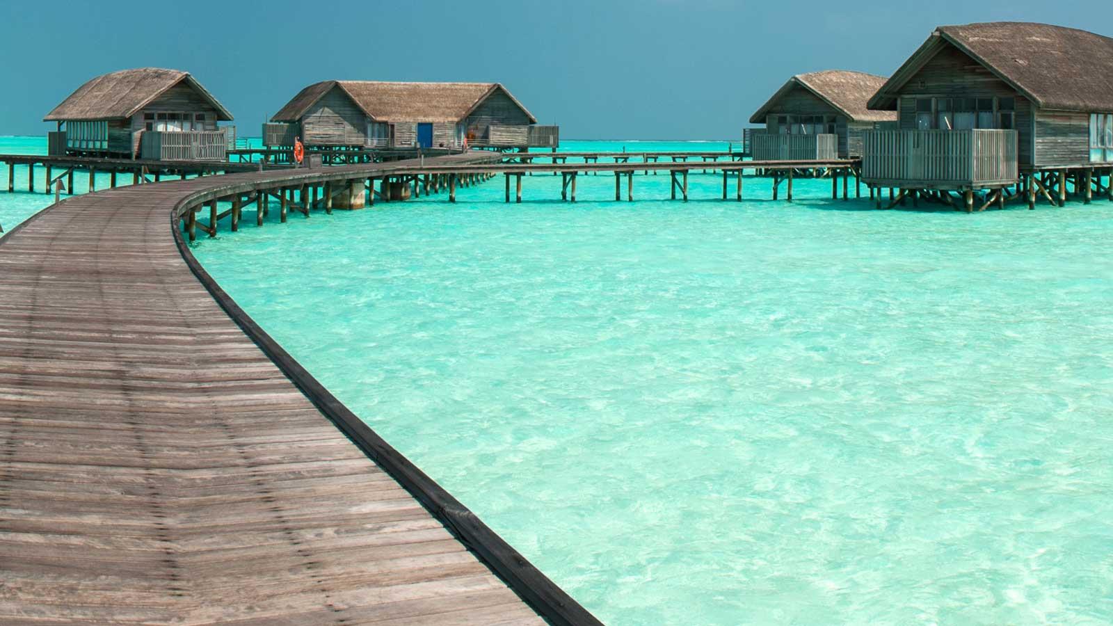 Maldiv Adaları'ndaki Türk Firmaları
