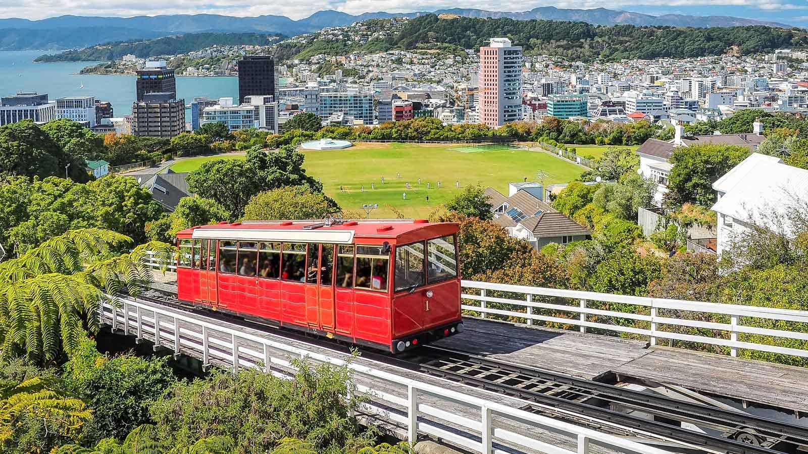 Wellington'daki Türk Firmaları
