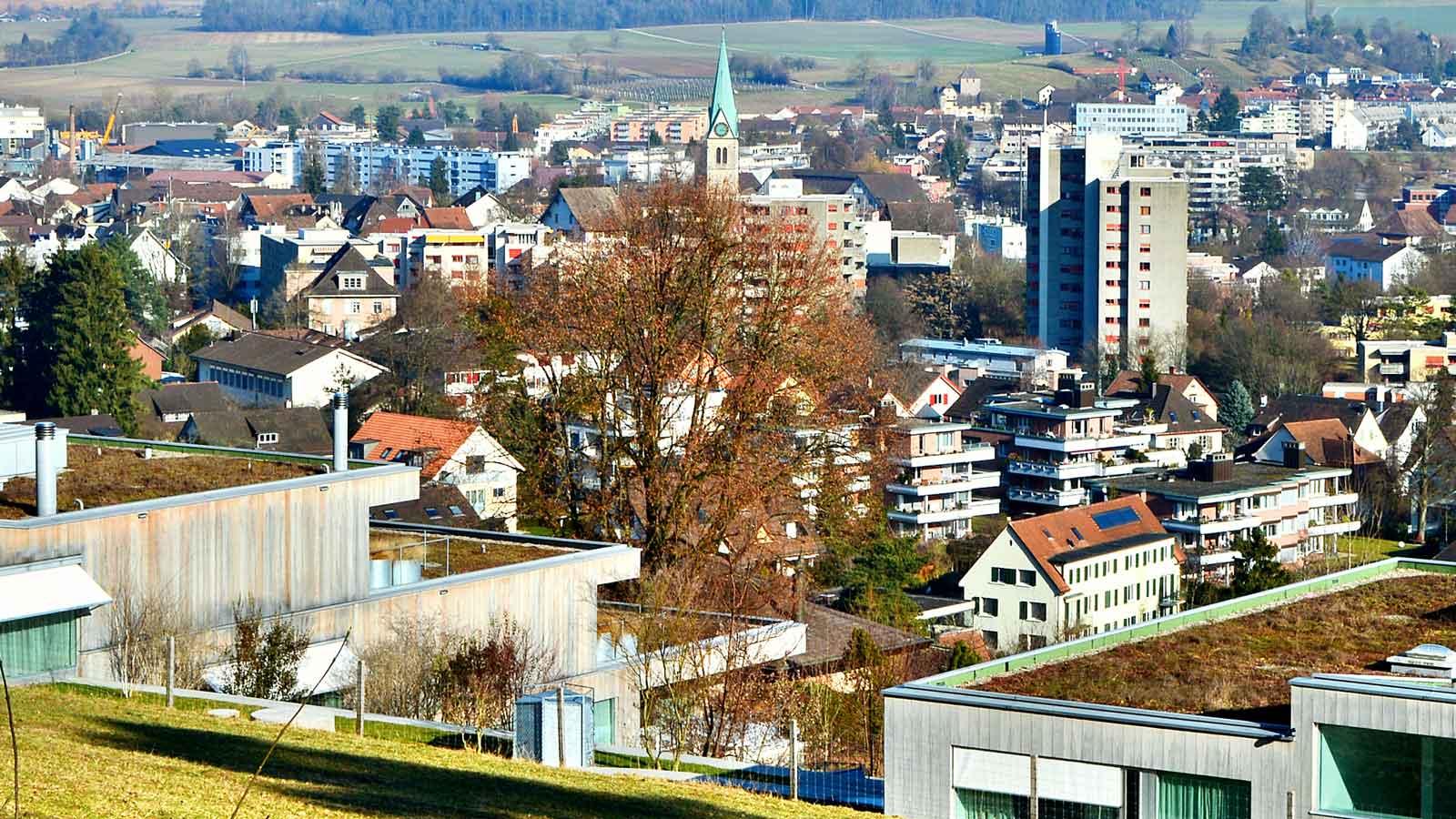 Winterthur'daki Türk Firmaları