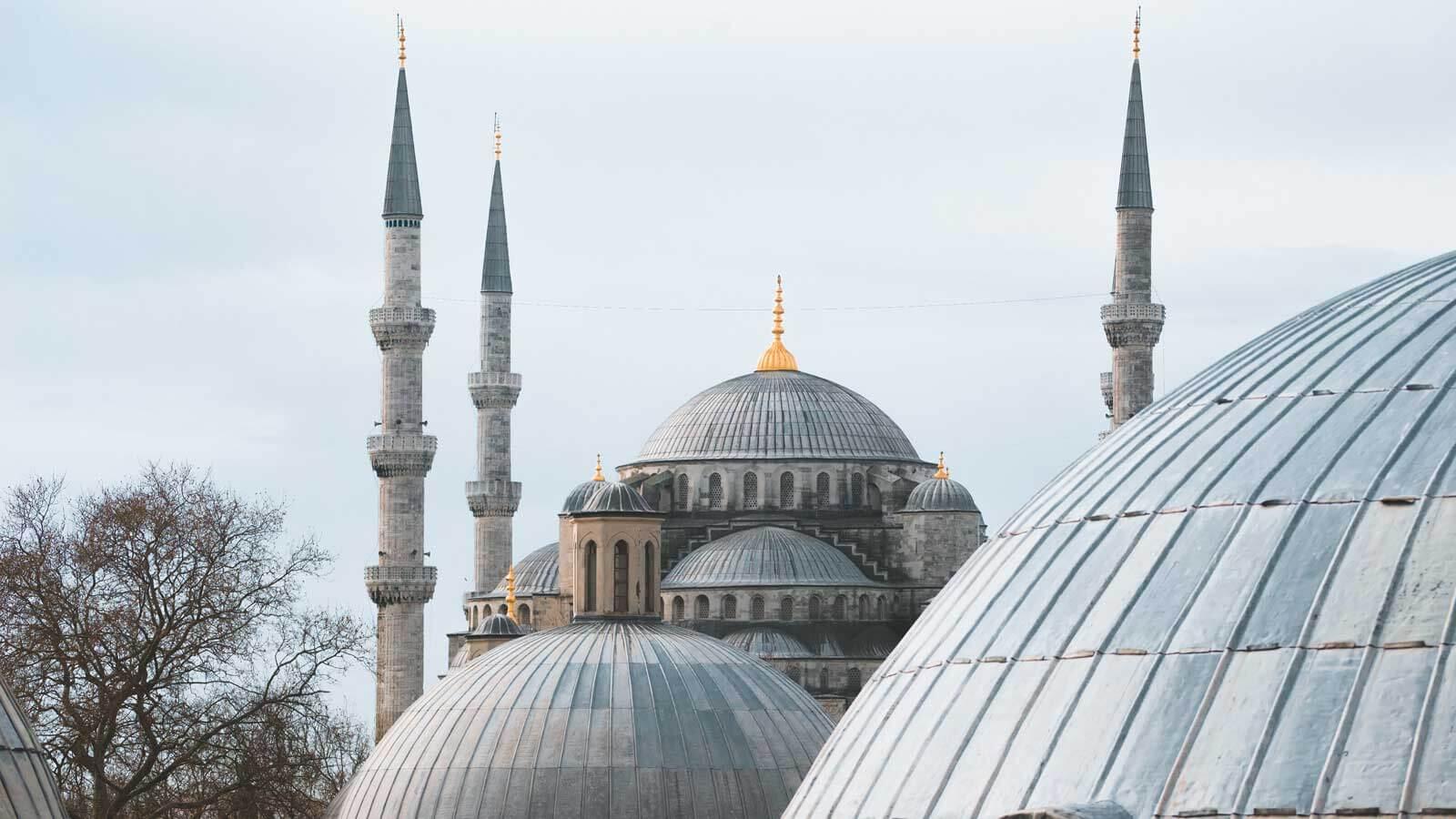 İstanbul Firmalar